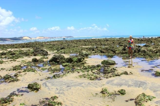 praia de pipa leidi turatti natal 8