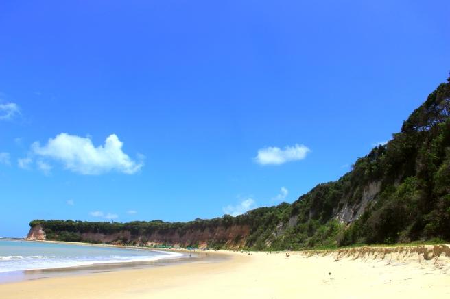 praia do curral baia dos golfinhos praia de pipa leidi turatti 2