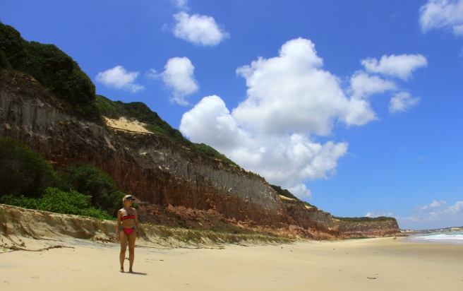 praia do curral baia dos golfinhos praia de pipa leidi turatti 3