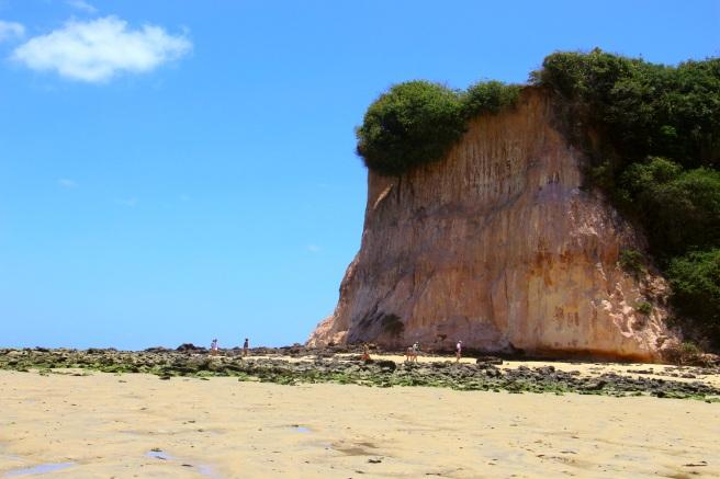 praia do curral baia dos golfinhos praia de pipa leidi turatti 5