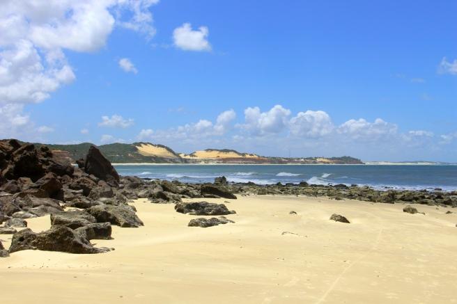 praia do curral baia dos golfinhos praia de pipa leidi turatti 6