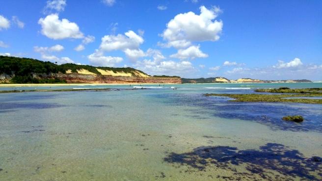 praia do curral baia dos golfinhos praia de pipa leidi turatti 8